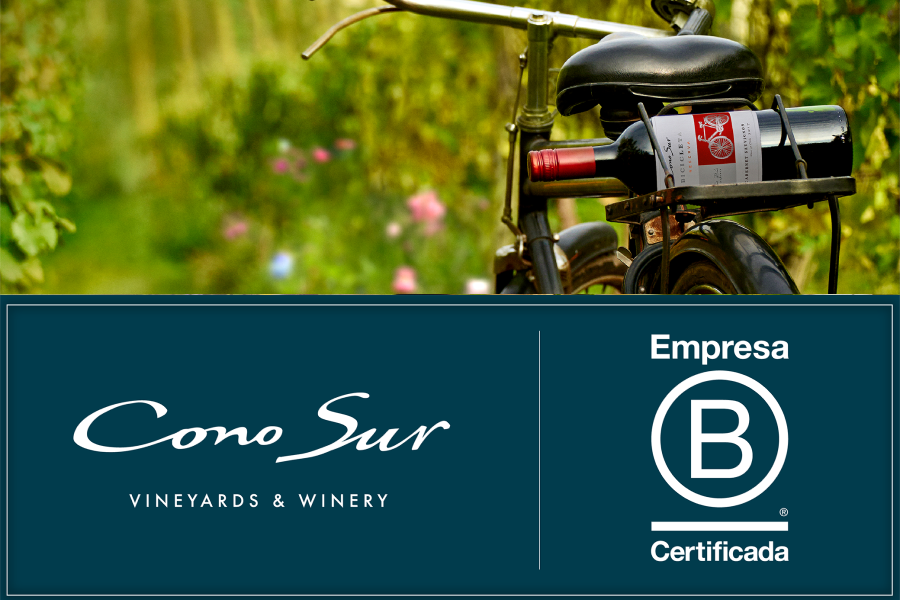 news:Cono Sur Vineyard is Certified as B - Corp Company